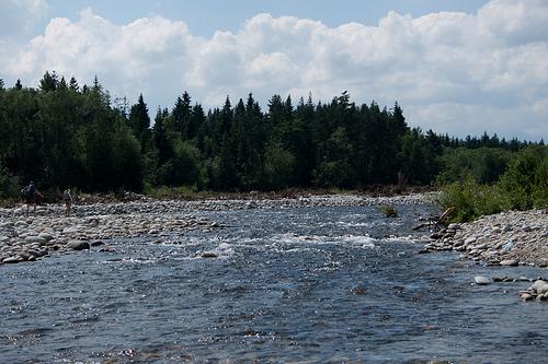 Rzeka Białka zdjęcie
